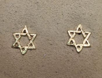 Star of David Earrings - 14kt Yellow Gold