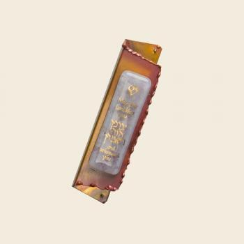 Baby Pink Mezuzah - Copper