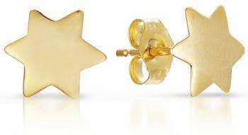 14kt Gold Star of David Earrings