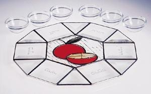 Orange Seder Plate - Stained Glass